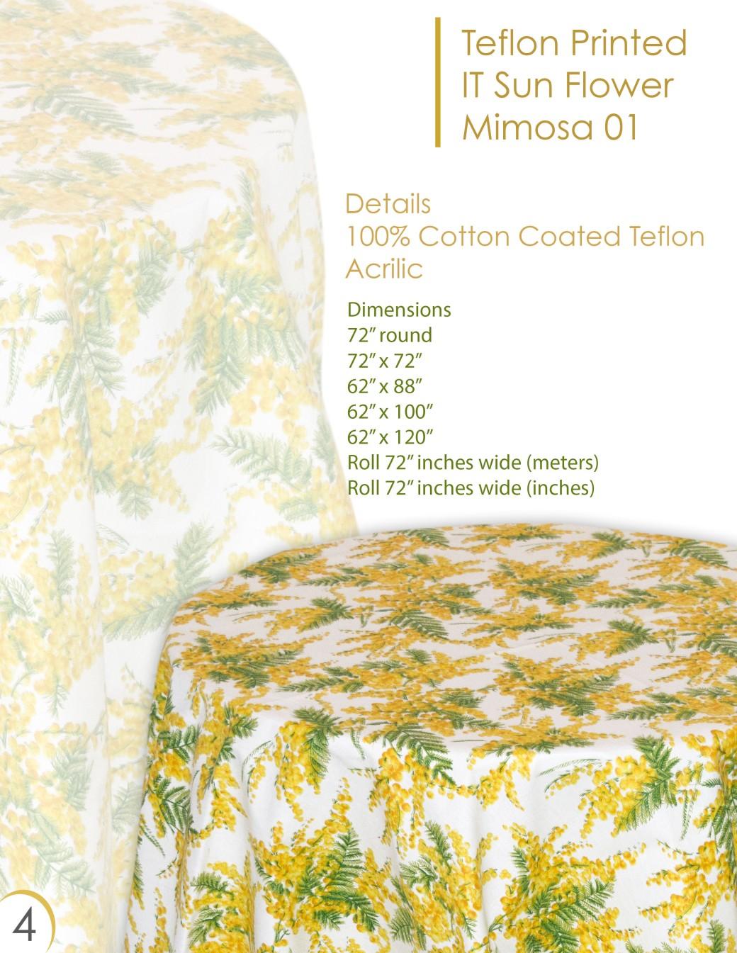 sun flower mimosa